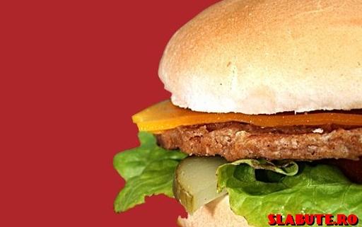 hamburger Taxa Fast Food