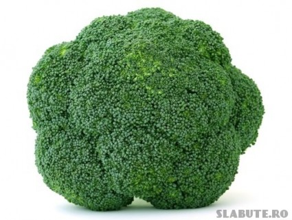 broccoli sanatatea verde 425x321 Broccoli