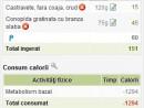 subtotaluri mese 130x98 Calculator nutritional Slabute 3