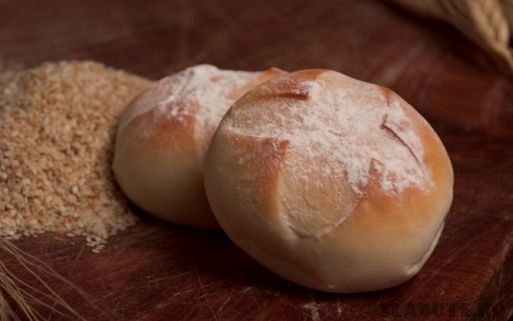 paine faina macerata Cereale   macerare, fermentare, incoltire (II)