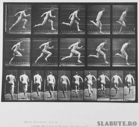 Muybridge runner Alergat
