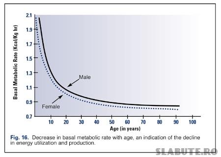 varsta metabolism bazal Metabolism bazal   factori de influenta