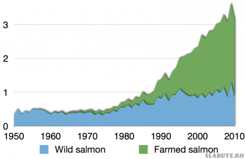 800px Time series for global production of all salmon 497x321 Somon salbatic vs Somon de crescatorie